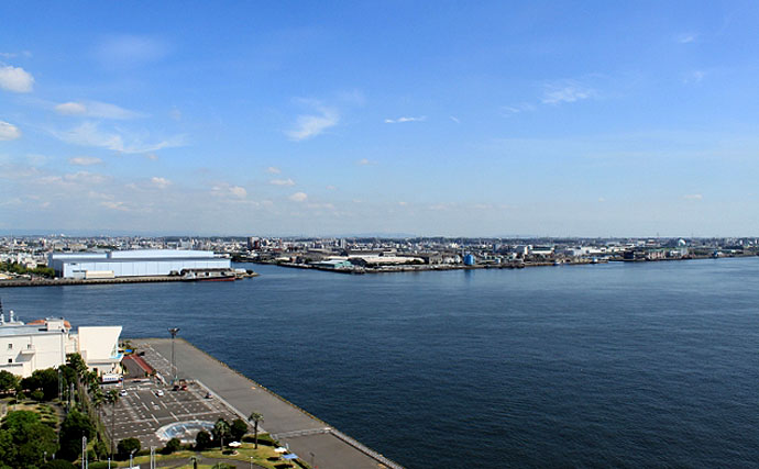 ストラクチャーを狙い撃て!名古屋港のボートシーバスでルアーデビュー