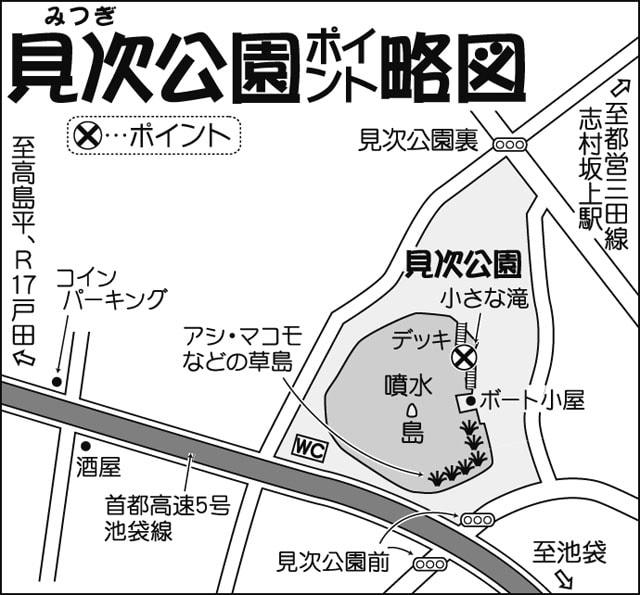 東京都板橋区のオアシス見次公園でクチボソ釣りの妙味を体験
