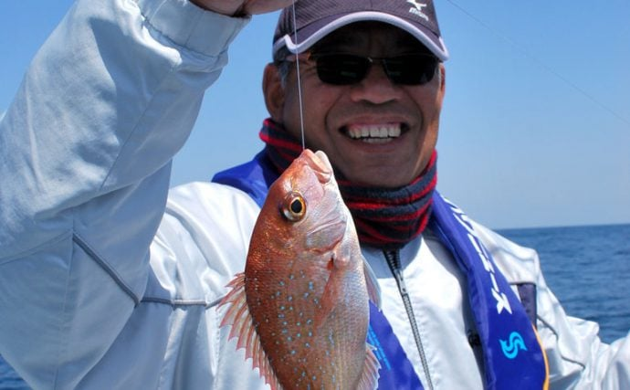 京都西舞鶴出船、大型マダイが期待できる丹後沖白石グリのカカリ釣り