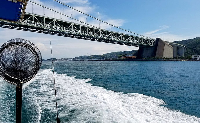 初夏から開幕!船から狙うマダコ釣りでおさえておきたい基礎知識