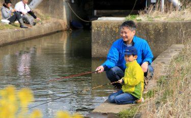 身近な水辺で気軽に楽しめる、気ままでのどかなマブナ釣り