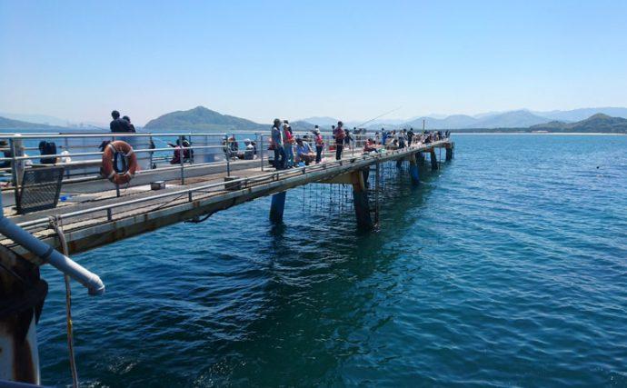 家族釣行にぴったり!食事も充実バーベキューも楽しめる福岡市海づり公園