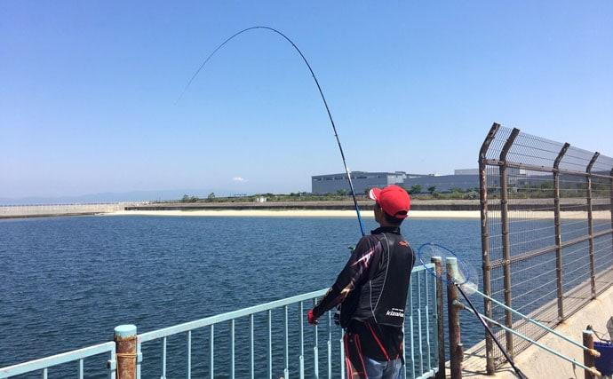 ウキフカセ釣りなのにウキを固定しない!?全層釣法でのチヌのフカセ釣り