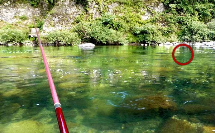 自分でアユを探り当てていく瀬釣りが気持ちいい!勝負が早いアユの瀬釣り