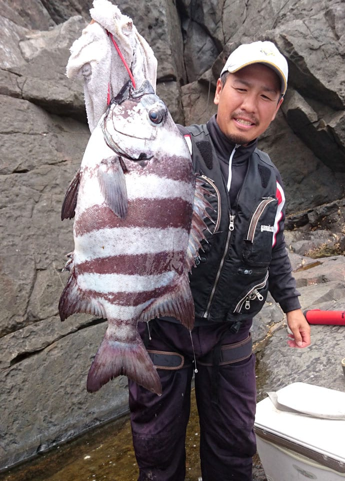 悦田さんが50cmオーバーの良型イシダイ