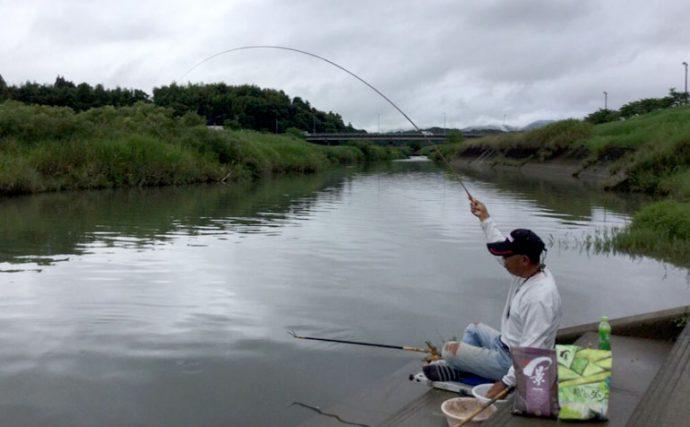 ヘラブナ本流河川でドボン釣り作戦【熊本県山鹿市・岩野川】