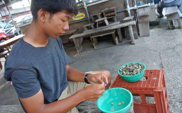 カワハギ釣りのエサはアサリが最適だし、扱い方で釣果も伸びるという話