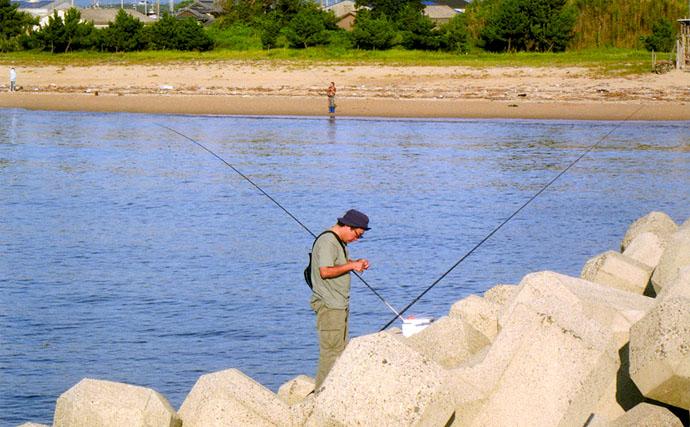 小魚沢山色々釣れるぞ!堤防からの投げサビキ釣り【三重県津市河芸漁港】