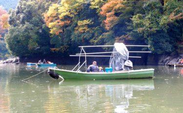ワカサギ釣りの季節到来!相模湖では2歳魚の良型主体【神奈川県相模湖】