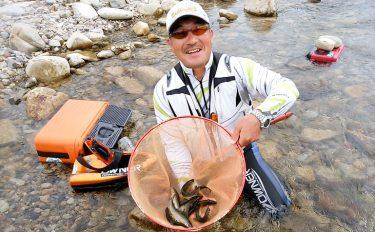 美味で定評ある和良川のアユ釣り、出荷所で買い取りも【岐阜県和良川】
