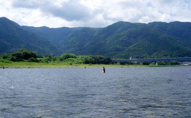 四国の清流アユ釣り目印吹っ飛ぶ貫禄の24.5cm【徳島県吉野川】
