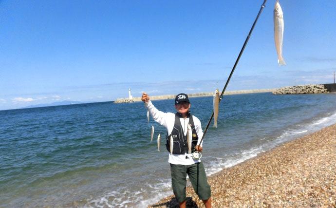秋のシロギス本格シーズンなんと241尾の大爆釣【兵庫県淡路島鳥飼漁港】