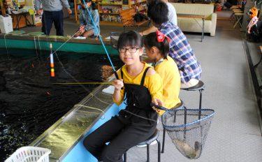 室内釣り堀でコイをげっちゅー♥【愛知県フィッシングポイントげっちゅー】