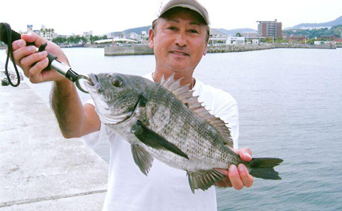淡路島で紀州釣り厳しい状況でチヌ12枚ゲット【兵庫県洲本港南防波堤】