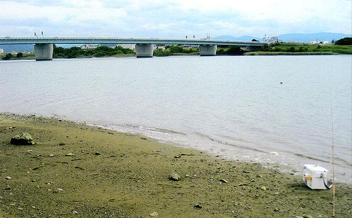 小継ぎの和ザオで身軽にハゼ釣り50匹と好調【和歌山県紀北紀ノ川右岸】