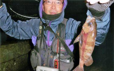 昼の部アジ、夜の部根魚やアナゴなど昼夜満喫【淡路島・生穂新島】