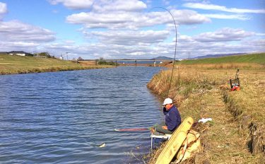 「危機管理これで委員会?」合志川のヘラブナとヘラ釣り師の釣行物語