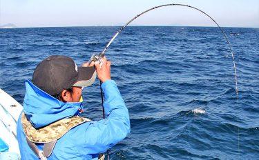 人気上昇中!泳がせで寒ビラメを狙うときは【釣り方編】