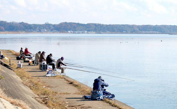 関東ヘラブナ今週の推薦釣り場【茨城県土浦市土浦新川】