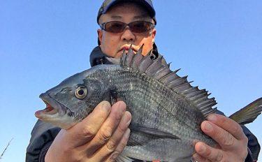 寒チヌ!紀北和歌山港へ通い釣りの2日間!フカセ釣りで快釣&快釣!