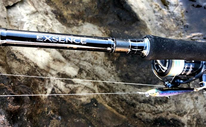 春風巻く磯に潜むサラシの王者!ヒラスズキを釣るために知っておきたいこと