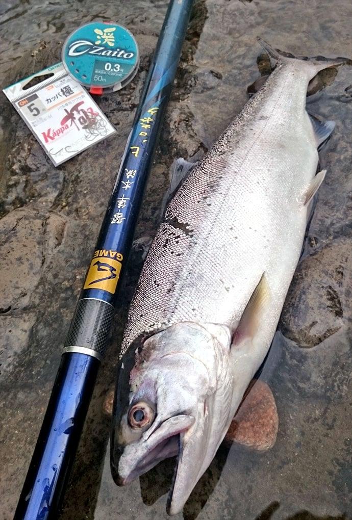 初期のヤマメはここだ!渓流エサ釣りの基本装備、ポイント選び、マナー!