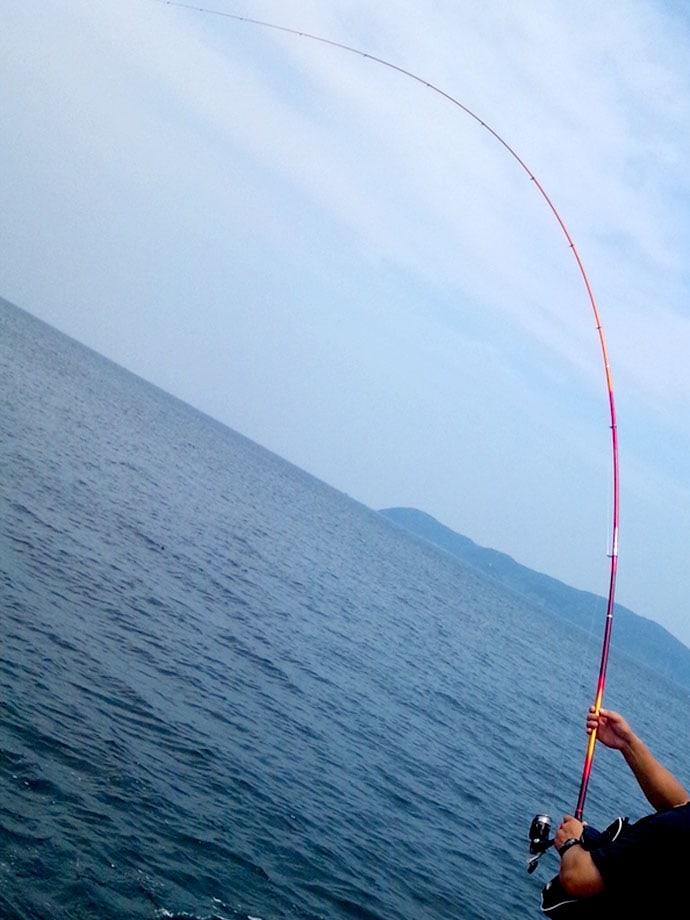 山陰地方はマダイの宝庫!磯からフカセ釣りで狙うマダイ釣りの魅力をご紹介