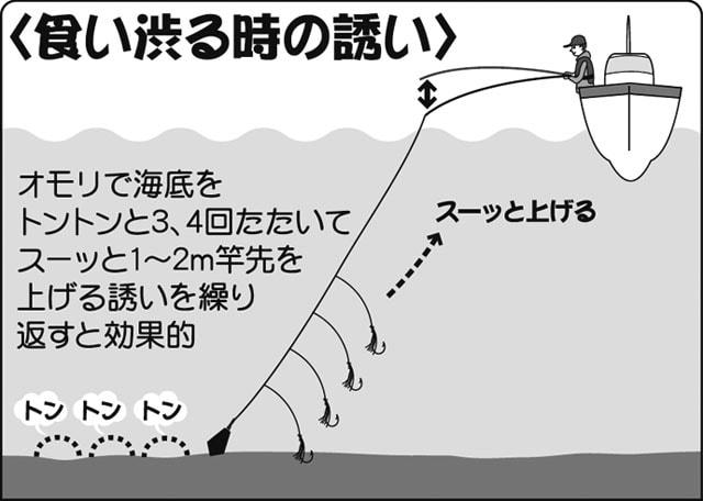 ホウボウを狙う!船のエサ釣りで必要な基本タックル&攻略法を紹介!