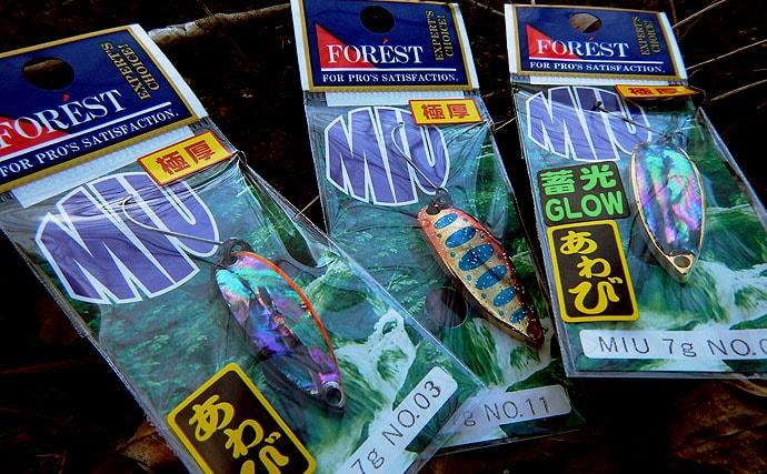 スプーンやミノーで食わせる!イワナ釣り【長野県遠山水系】
