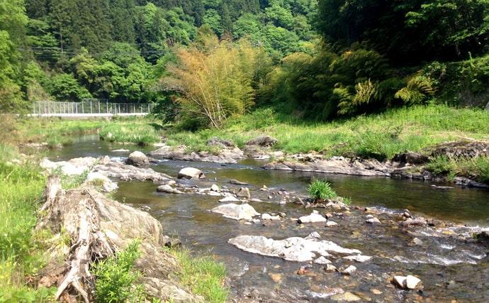 シンプルに毛バリを渓に流す自然との一体感が魅力。テンカラ釣りのすすめ