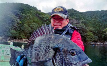 カセのダンゴ釣り。大型クロダイ狙って年無し51cm登場!【尾鷲市三木浦】