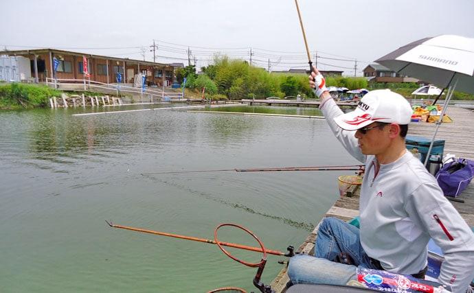 入門にオススメ!管理釣り場のヘラブナ釣りを解説【釣り方・推薦釣り場編】