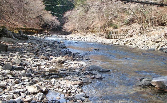 川虫で狙うアマゴ釣り。ポイント見つけ入れ食い状態。【奈良県・天川村】