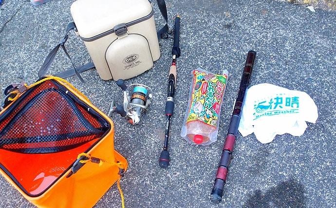 子供と楽しむ!釣って楽しい食べて楽しい波止釣り【神奈川県・小田原港】