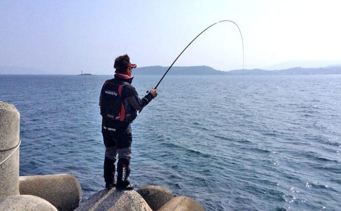 乗っ込み大型チヌに挑む!フカセ釣りを解説【タックル&エサ編】