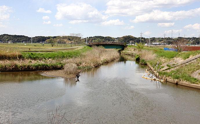 今週の関東ヘラブナ推薦釣り場【千葉県黒部川】