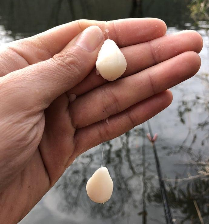 春の乗っ込み到来!野釣りのヘラブナ基本解説!【ポイント・釣り方編】
