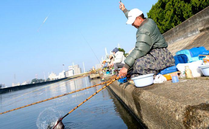 ヘラブナ釣り上達への道しるべ【野釣りの底釣り編④】