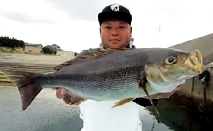 船釣りでのイサキ攻略法をイラストで解説!【南房エリア】
