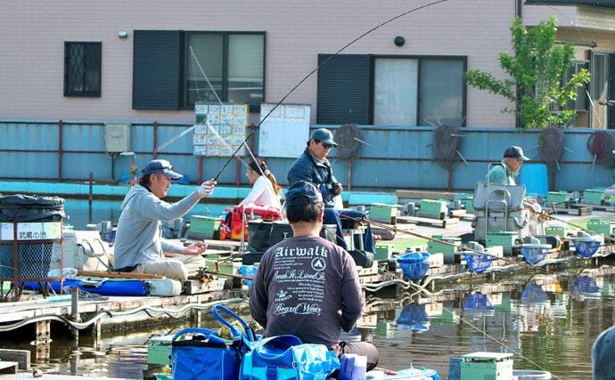 ヘラブナ釣り上達への道しるべ【数を伸ばすメーター両ダンゴ②】