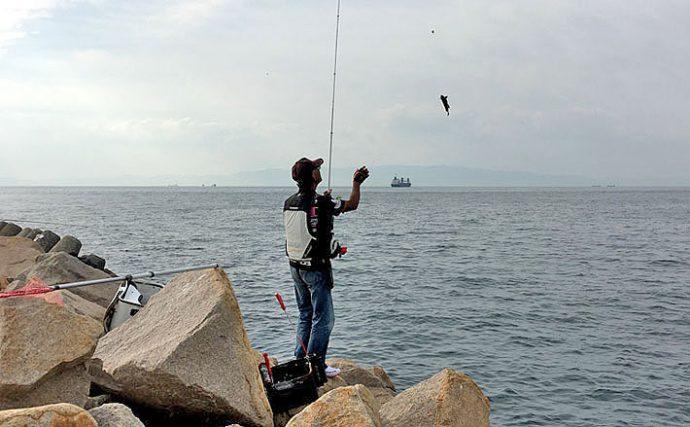 目指せステップアップ!グレ釣りを楽しむタックル選びを解説