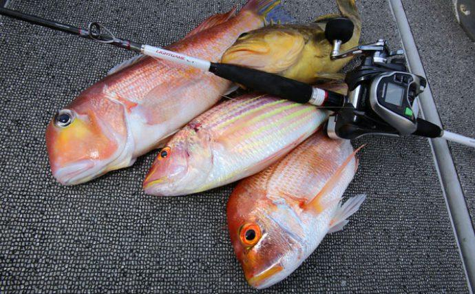 美味しい高級魚を釣ろう!船宿予約の注意点も【沖の五目釣り解説】