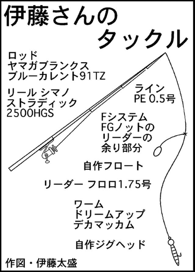 新月大潮に尺メバル!Fシステム仕様メバリング【和歌山県・那智勝浦】
