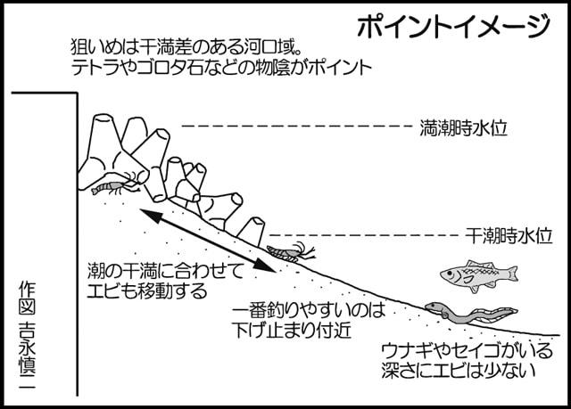 テナガエビ釣行&解説:釣ってよし!食べてよし!【熊本県・白川】
