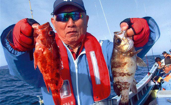 ウタセ五目釣行:どんな魚が掛かるドキドキ!【愛知県・南知多】
