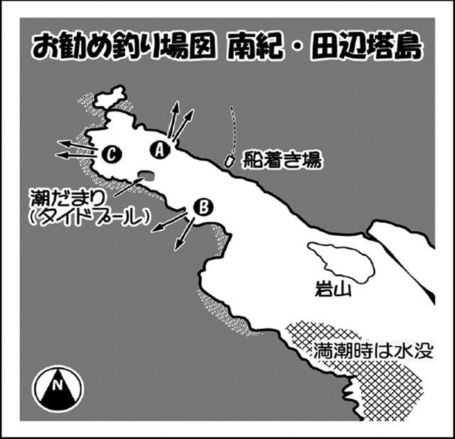 投げ釣りのススメ:磯から狙うハマフエフキ!【和歌山県・田辺市】