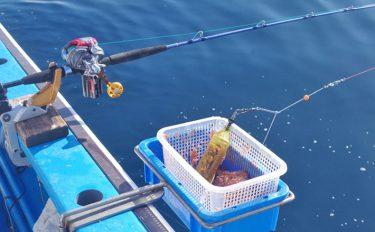 コマセ釣り攻略:コマセの種類とタナの取り方【イラスト付き解説】