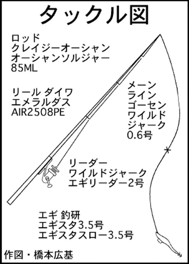 エギング釣行:仕事帰りに1.5kgアオリイカ登場!【三重県・南伊勢町】