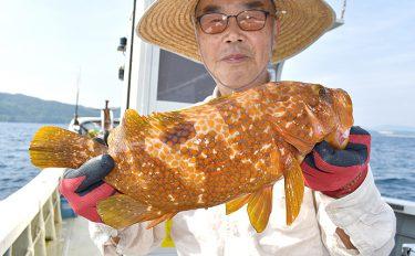 根魚五目釣り:船から泳がせでアコウ他高級魚を狙う【京都府・光進丸】
