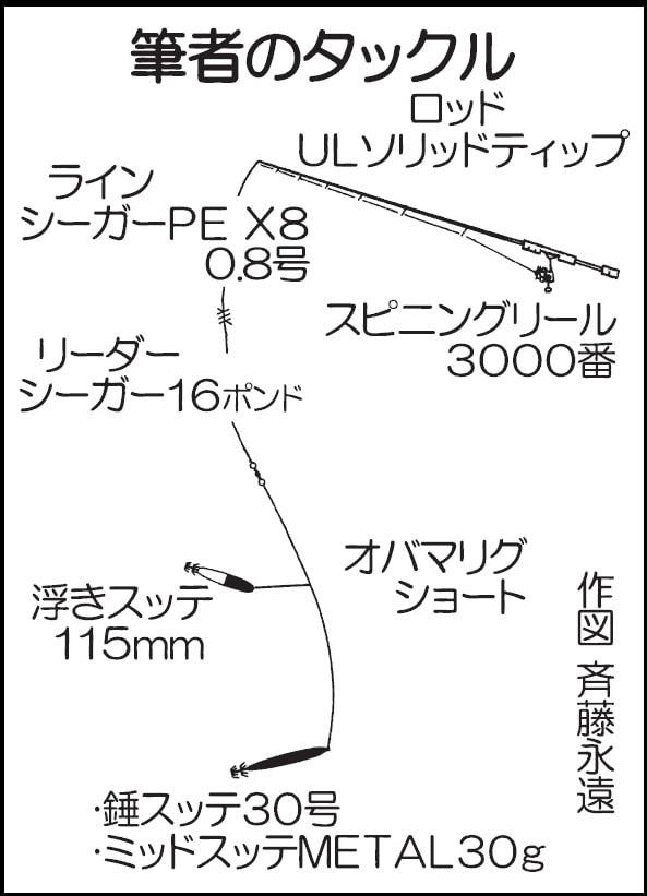 イカメタル釣行:ケンサキイカ80尾!数釣り満喫【佐賀県・仮屋湾】